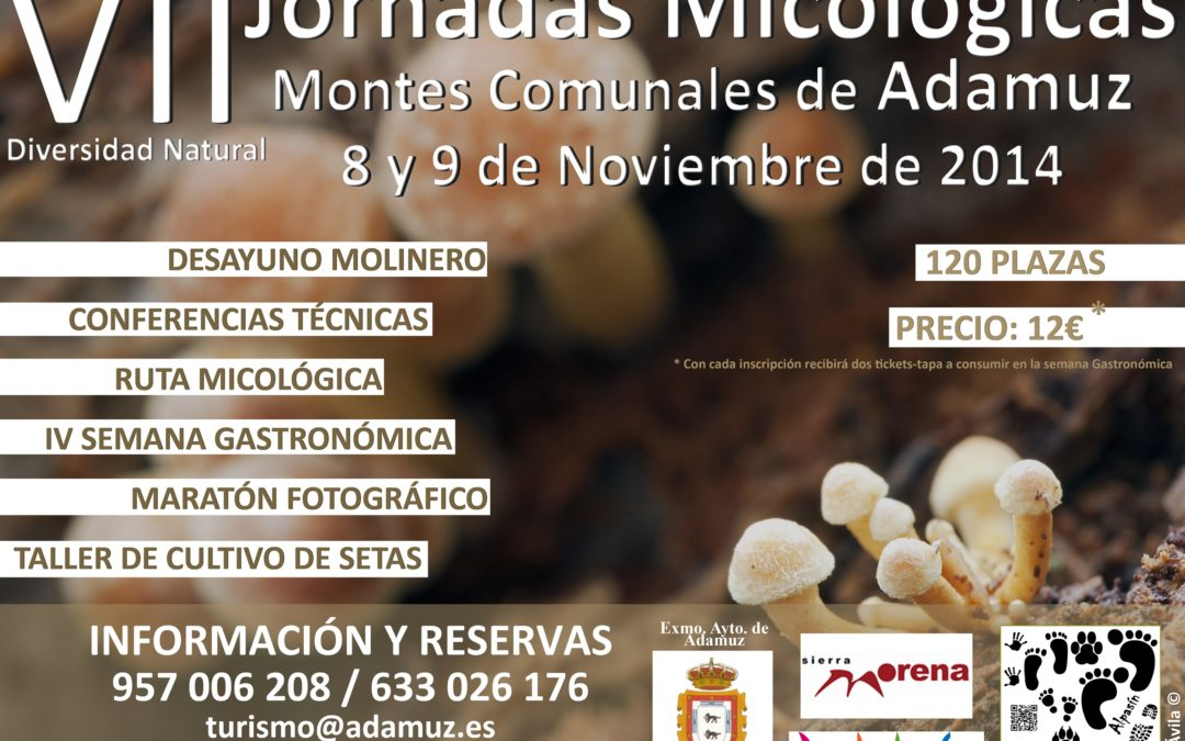 Jornadas Micológicas en Montes Comunales