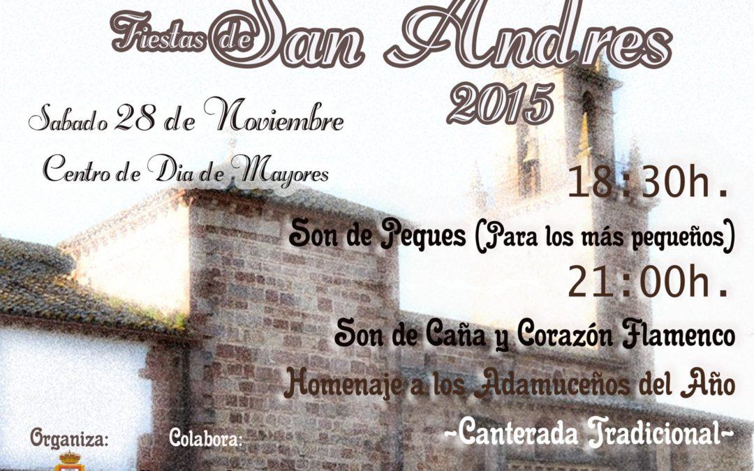 FIESTA DE SAN ANDRÉS 2015
