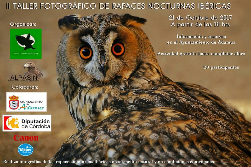 II TALLER FOTOGRÁFICO DE RAPACES NOCTURNAS IBÉRICAS 1
