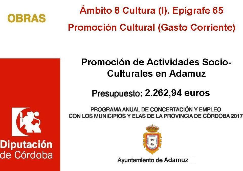 Promoción de Actividades Socio-Culturales en Adamuz 1
