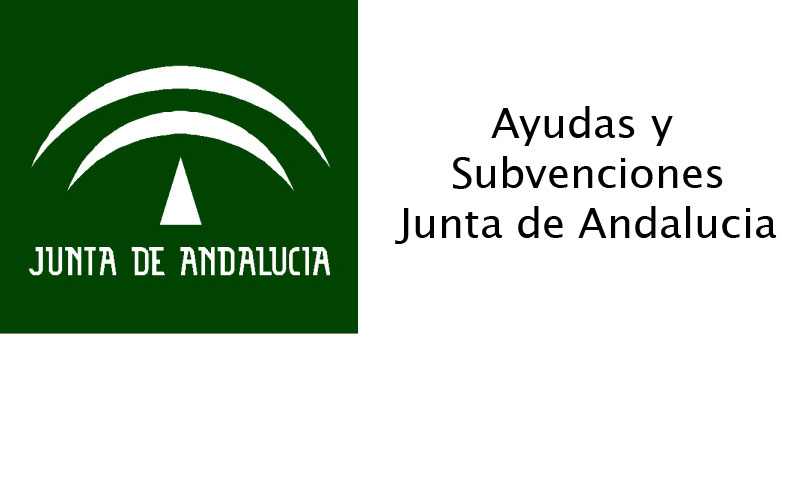 Subvenciones institucionales para programas y mantenimiento en el ámbito de las personas mayores. Línea 14 (Bases Reguladoras 2018) 1